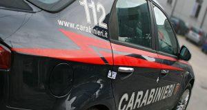 Incidente stradale a Barcellona Pozzo di Gotto: cavallo muore investito da un'auto