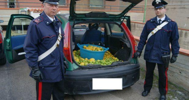 Roccalumera: 3 arresti per furto aggravato