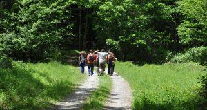 """""""Bus & Trek"""": i 35 itinerari escursionistici per riscoprire le meraviglie del nostro territorio"""