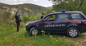Condannati i due piromani arrestati dai Carabinieri di Saponara