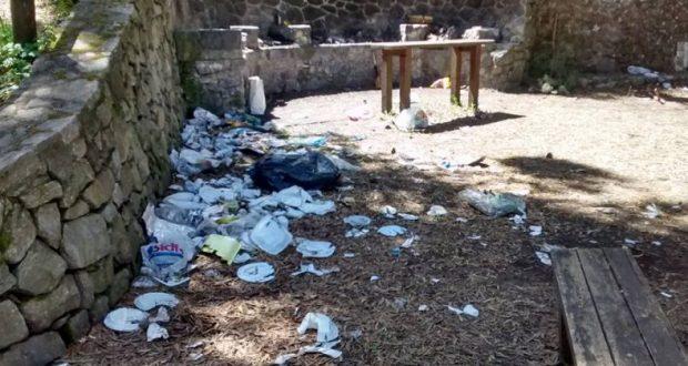 La Commissione Ambiente richiede presidio Guardia Forestale sui colli San Rizzo