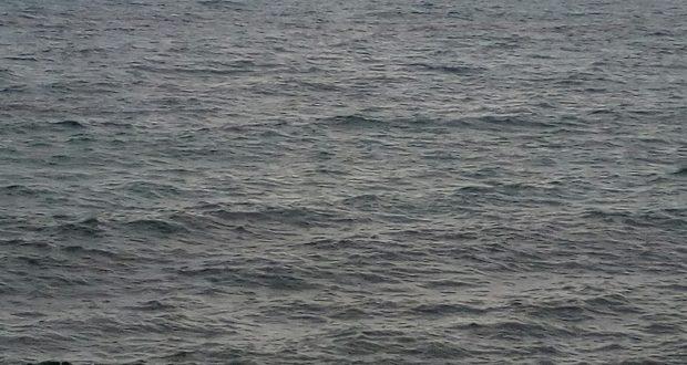 Ritrovato da un pescatore un cadavere nelle acque di Santo Saba