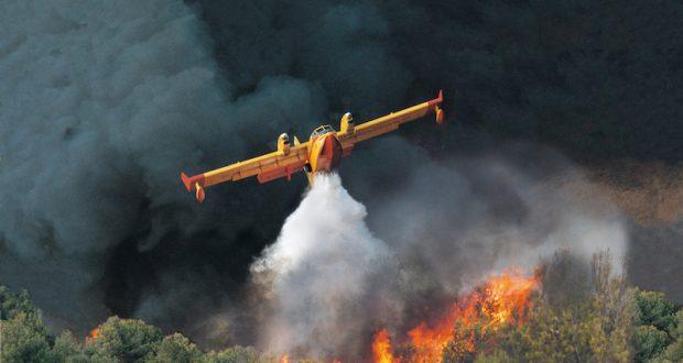 Roccella Valdemone, il video dei canadair in azione contro le fiamme