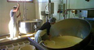 Mistretta, sequestrati latte e formaggi in un'azienda zootecnica