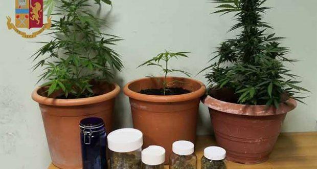 Spinelli in auto e piante di marijuana a casa: la Polizia arresta 23enne messinese