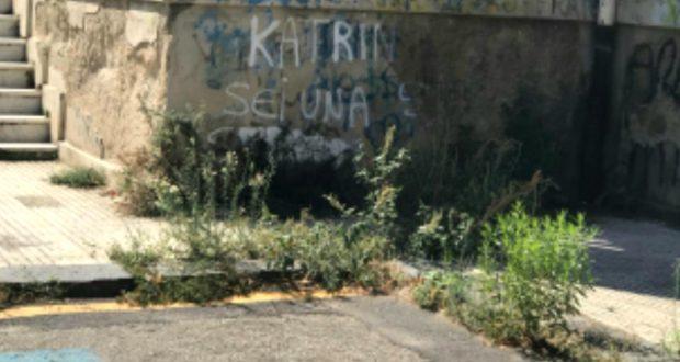 """Messina, erbacce topi insetti alla scuola """"Pascoli-Crispi: alti rischi per i bambini"""