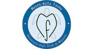 """Museo della Fauna: a marzo il via al """"Corso di Medicina e Biologia dei Cetacei"""""""
