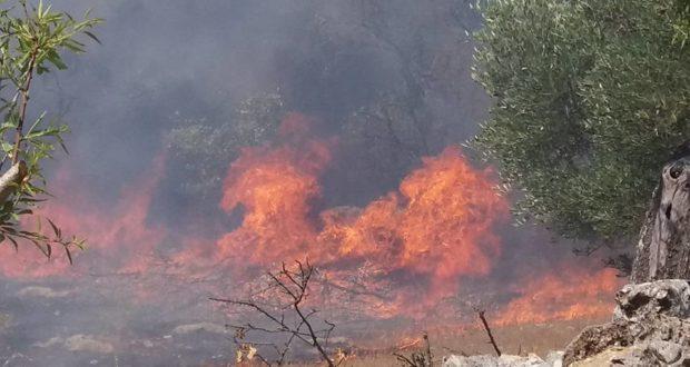Roccella Valdemone: grave incidente stradale a seguito di un incendio