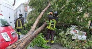 Messina, un albero cade in via Giolitti e blocca il traffico