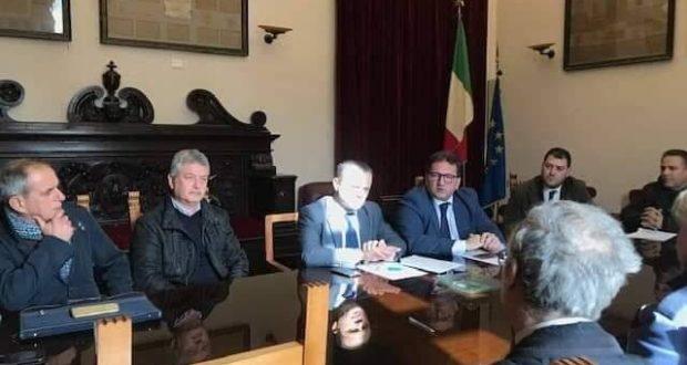 Emergenza cinghiali: tavolo tecnico oggi a Palazzo Zanca