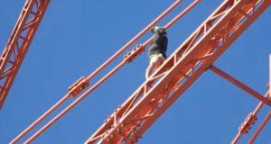 Messina, si arrampica sul Pilone: denunciato