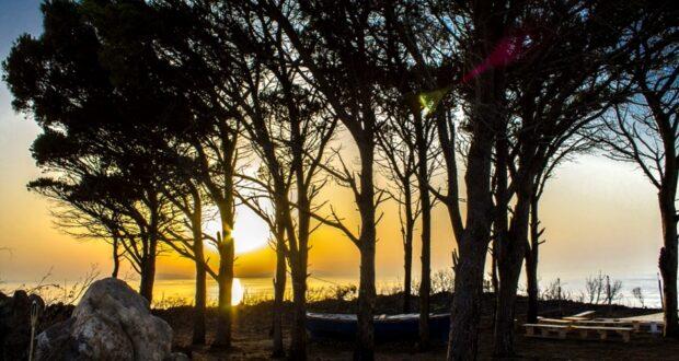 """Teatro al tramonto: Maurizio Marchetti racconta le """"Strane storie"""""""