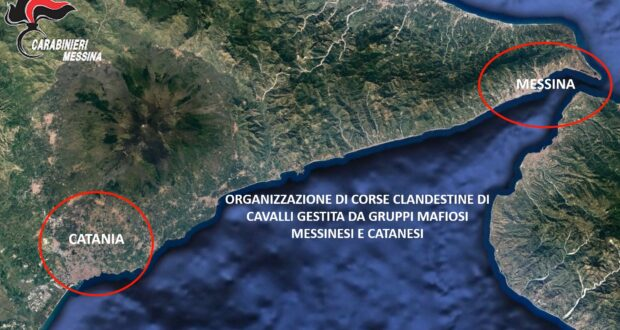 Messina, sgominate le corse clandestine di cavalli, 33 tra arresti e misure cautelari