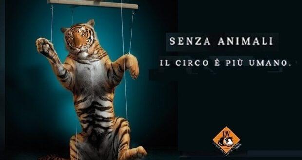 Anche la LAV si schiera contro il sindaco De Luca e i suoi sodali in merito al circo bloccato a Messina