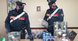 I Carabinieri di Taormina infligono un altro duro colpo al mondo dello spaccio di droga
