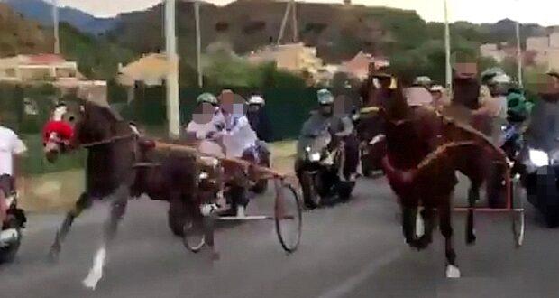 Corse cavalli clandestine, Articolo Uno Messina: Governo risponde ad interpellanza LeU