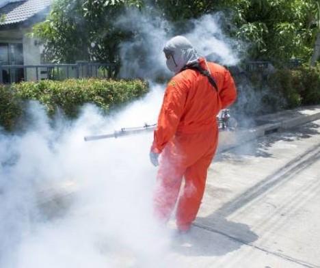 Estate senza insetti nocivi e zanzare: disinfestazione nella zona Nord da oggi al 17 giugno