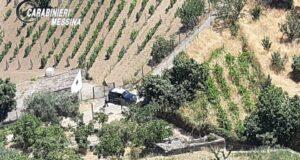 Graniti: settantenne si perde nel bosco. Salvato dai Carabinieri che lo hanno ritrovato in una scarpata. (VIDEO)