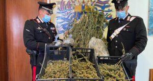 Furnari, detenevano droga in casa: coppia arrestata dai Carabinieri