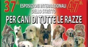 Oliveri: Internazionale cinofila approda a Marinello